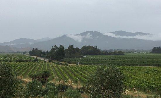Nelson, Nowa Zelandia: Pretty even in the rain...