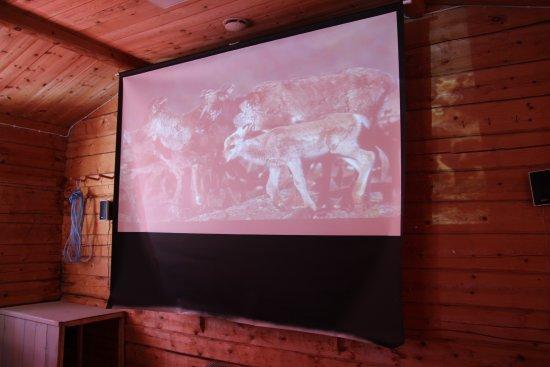 Sámi Siida - Márkanbáiki : DVD on the Sami