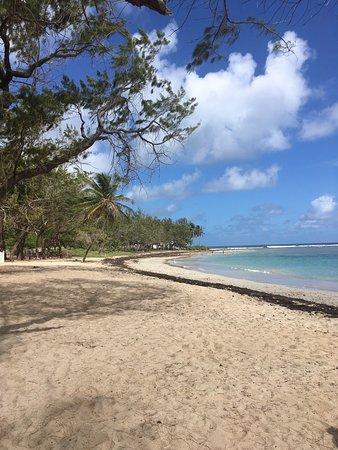 Bath Beach: photo0.jpg