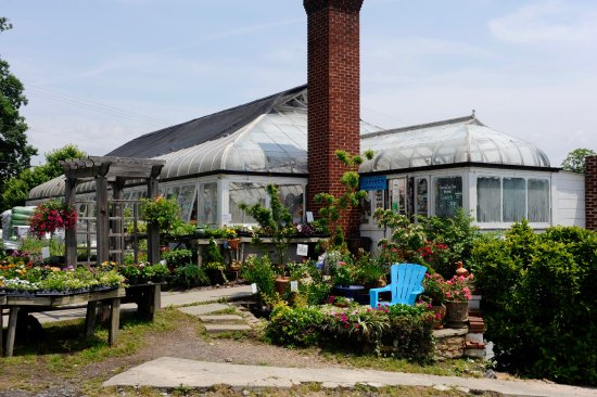 Abernethy & Spencer Greenhouses