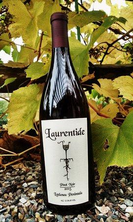 Lake Leelanau, MI: New release Pinot Noir 2015