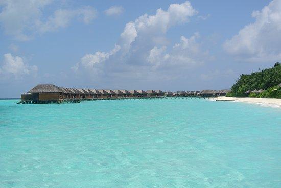 Veligandu Island Resort & Spa Φωτογραφία