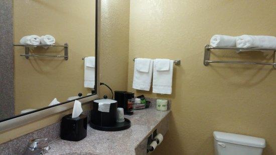 أمباسادور إن آند سويتس توسكالوزا: Bathroom
