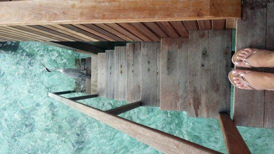 VOI Dhiggiri Resort: 20170322_054244_large.jpg