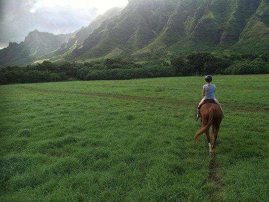 Kaneohe, Гавайи: Wear Pants!