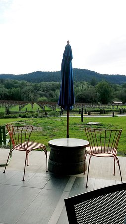 Boonville, CA: View from the patio area - sheep and vines!