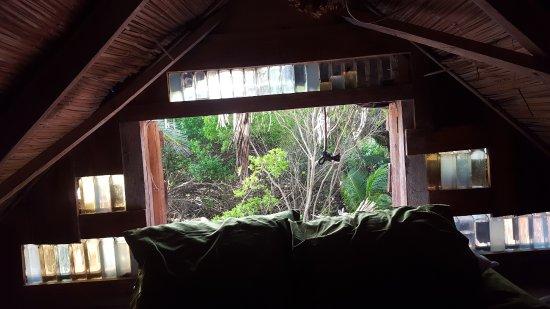 Derek's Place: Beach House/Casa Grande jungle side bedroom