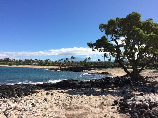 Holualoa, Hawái: A slightly windy visit