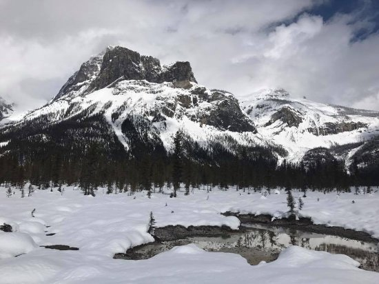 Emerald Lake Lodge: Snowshoeing around the lake