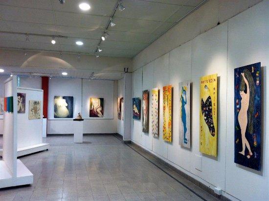 Museo de Bellas Artes Manuel Balarino