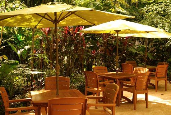 Yerbabuena del Sisal Restaurante: Agradable jardin en Yerbabuena