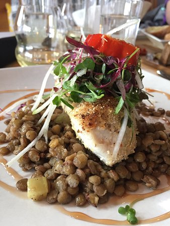Driggs, ID: Lemon Snapper over Lentils