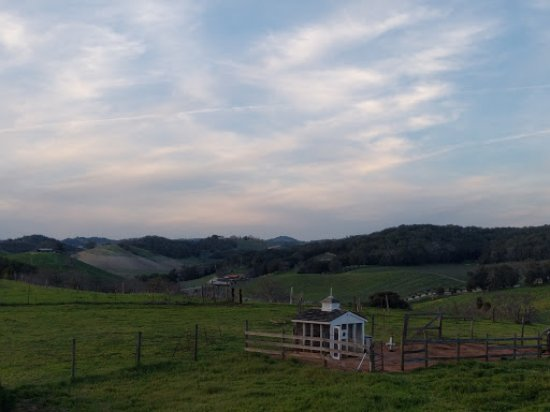 Orchard Hill Farm Bed & Breakfast : Beautiful place!