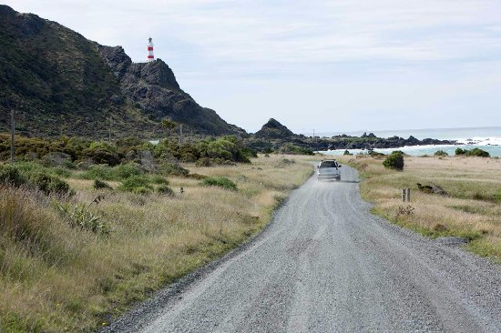 Wairarapa, นิวซีแลนด์: Road to Cape Palliser lighthouse