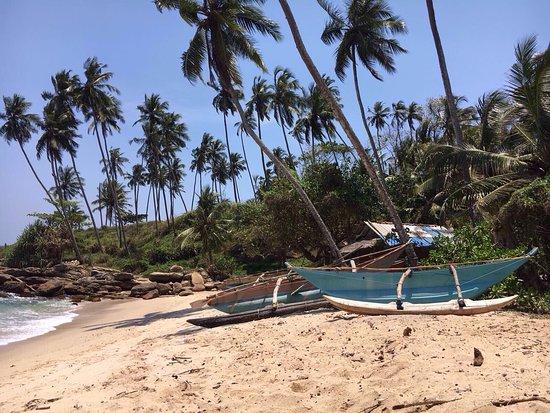 Τανγκάλε, Σρι Λάνκα: photo1.jpg