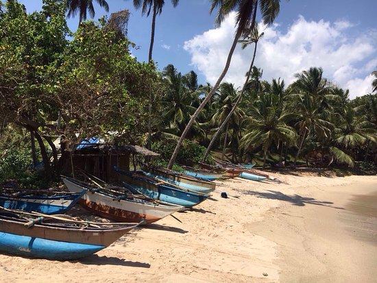 Τανγκάλε, Σρι Λάνκα: photo3.jpg