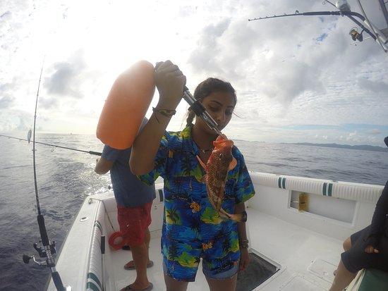 Mixed Bag Sportfishing - Offshore Adventures: Rock Hind Fish
