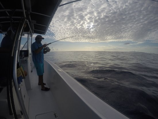 Mixed Bag Sportfishing - Offshore Adventures: The One That Got Away