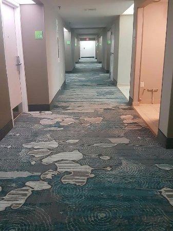 howard johnson plaza hotel miami airport hialeah gardens fl. holiday inn miami west - airport area: hallway. carpet looks new. howard johnson plaza hotel hialeah gardens fl