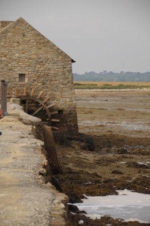 Ile-d'Arz