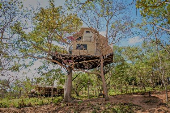 TreeCasa Resort