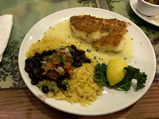 Palm City, Floride : panko haddock with rice and beans