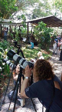 La Virgen, Costa Rica: Costa Rica Nature Photography