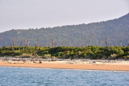 Cowes, Αυστραλία: Coastal scenery Wilsons Promontory.