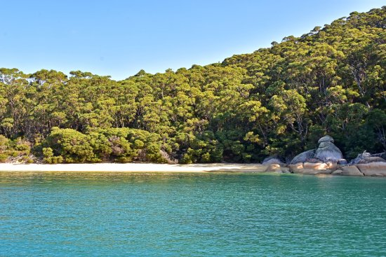 Cowes, Αυστραλία: Refuge Cove, Wilsons Promontory