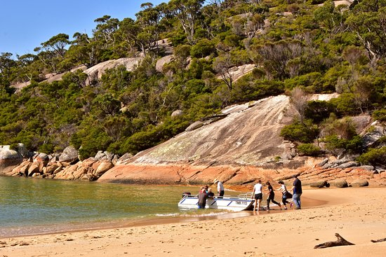 Cowes, Australia: Transferring passengers back to the boat at Refuge Cove, Wilsons Promontory.