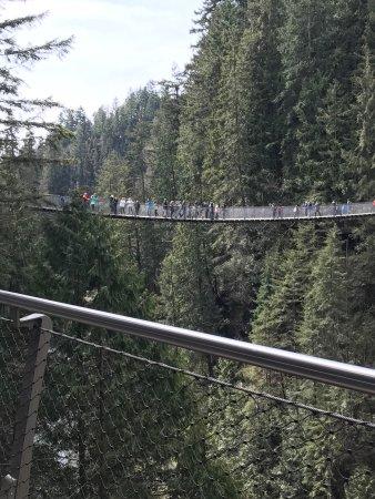 North Vancouver, Canada: photo3.jpg
