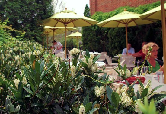 Garden Terrace dining at Lucky 32 Southern Kitchen in Cary