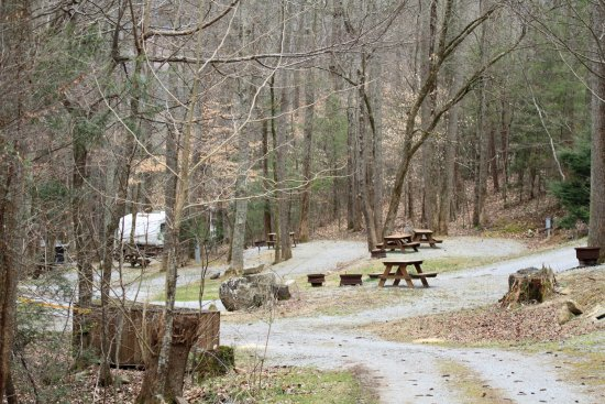 Woodsmoke Campground: Looking down the hill toward the main entrance.