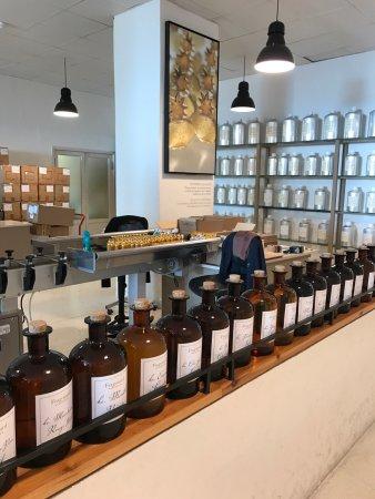 4c9a88b98b7 Frente da Fábrica - Foto de Parfumerie Fragonard