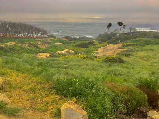 Sunset Cliffs Natural Park: photo3.jpg