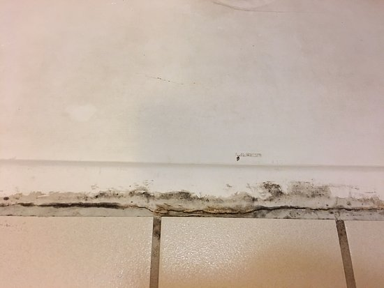 Greeneville, TN: Disgusting bathroom features mold, rust, filthy grout and they do a poor job cleaning