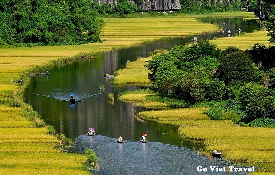 Go Viet Travel