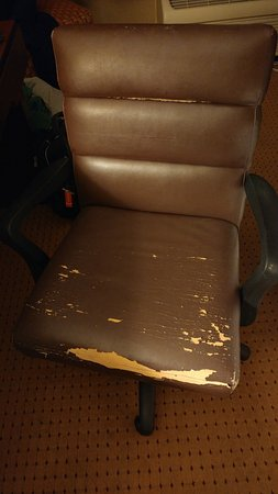 Radisson Hotel Rochester Riverside: Desk chair