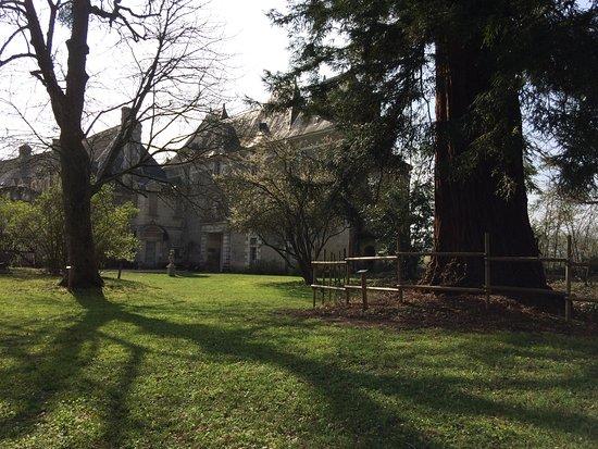Selles-sur-Cher, Francia: Le château médiéval de Selles sur Cher