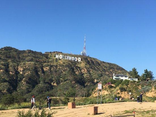 Hollywood: photo6.jpg