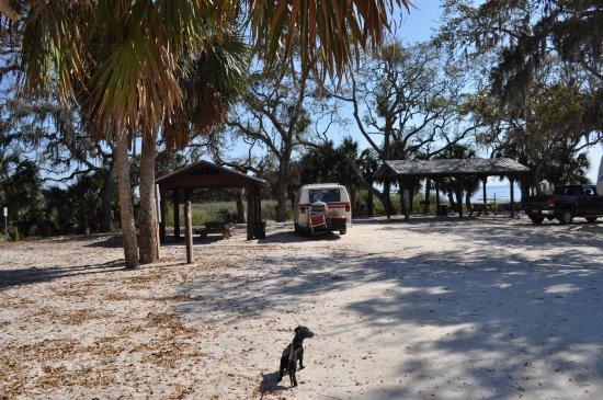 Shired Island Fl Beach Camping