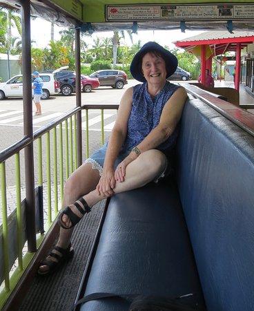Denarau Island, Fiji: Margaret on bula bus