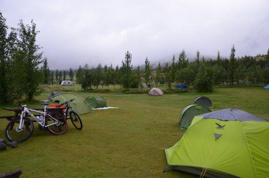 Campsite Geysir