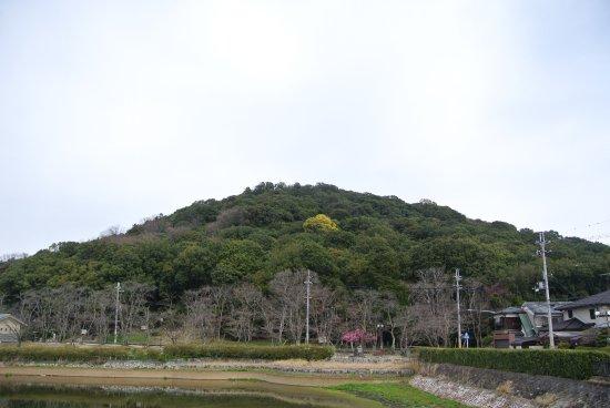 Mt. Miminashi