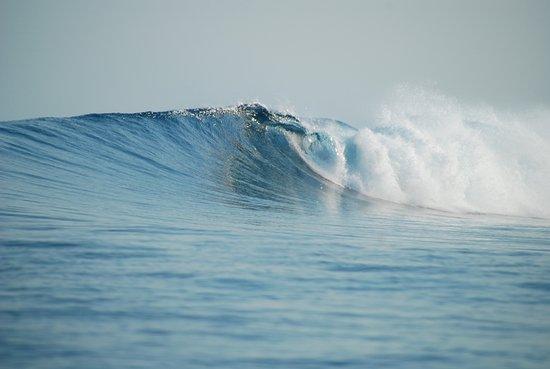 Остров Тхулусдхоо: Cokes surf break in Thulusdhoo