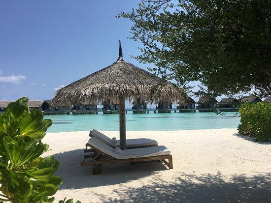 Cocoa Island by COMO: Et paradis!!
