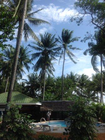 Negros Island, Philippines: Ein wunderschöner und gepflegter Pool