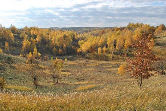 Sverdlovka, Ukraine: осенние пейзажи