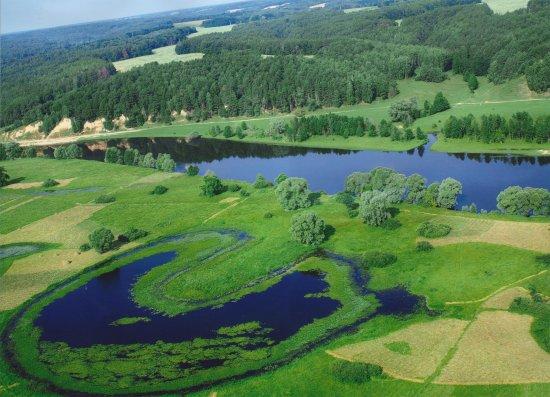 Sverdlovka, Ukraine: озеро-подкова в заплаве Десны