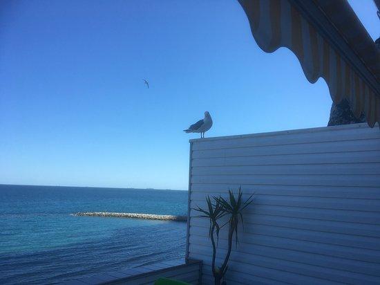 Sandy Bay Photo